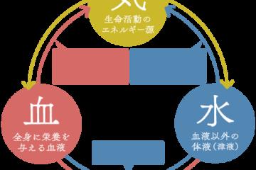 気・血・水とは:望永航史のオンライン中医学講座